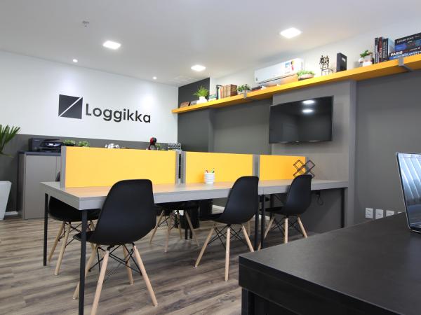 loggikka-domo_1